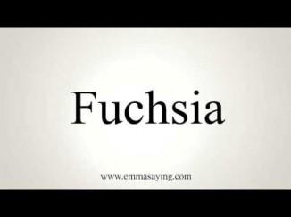 how-to-pronounce-fuchsia