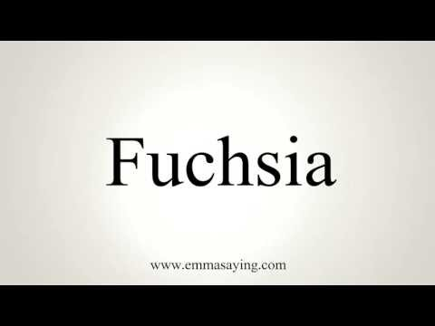 how-to-pronounce-fuchsia